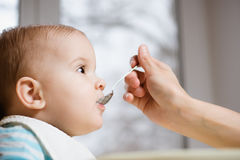 A mãe dá o comida para bebê de uma colher Fotografia de Stock