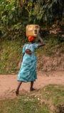 Mãe e bebê na busca para a água perto do parque nacional impenetrável de Bwindi fotos de stock royalty free