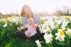 Mãe e bebê no parque da mola entre o campo da flor fotos de stock royalty free