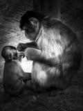 A mãe e a criança Imagem de Stock Royalty Free