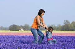 Mãe e criança no campo colorido do bulbo Imagens de Stock Royalty Free