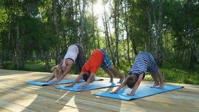 Mãe e duas crianças que fazem a ioga fora video estoque