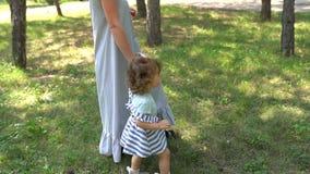 Mãe e filha andando juntas num parque vídeos de arquivo