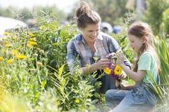 Mãe e filha de sorriso que olham flores ao jardinar na exploração agrícola fotos de stock royalty free