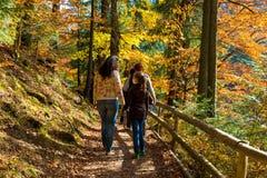 Mãe e filha que descansam na floresta Foto de Stock