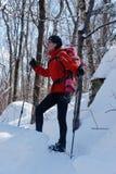 Mãe e filha que snowshoeing junto fotografia de stock
