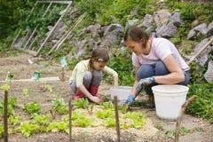 Mãe e filha que trabalham no jardim vegetal imagem de stock royalty free