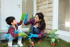 Mãe e filho highfive ao jardinar junto em casa fotos de stock royalty free