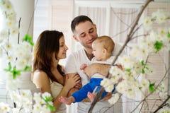 Mãe e pai que abraçam seu filho do bebê foto de stock royalty free