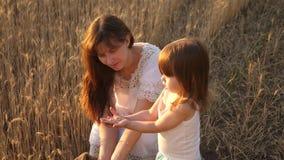 A mãe e pouca criança estão jogando com grão no saco em um campo de trigo o fazendeiro feliz da mãe está jogando com pouco filho vídeos de arquivo