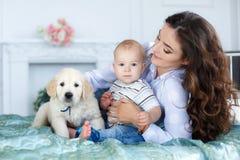 Mãe, filho novo e um cachorrinho bonito do golden retriever na cama Imagens de Stock