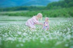A mãe loura com os vestidos cor-de-rosa coloridos brancos vestindo da filha pequena bonito na camomila coloca, horas de verão apr fotografia de stock royalty free