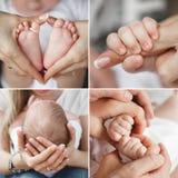 Mãe loving da colagem com um bebê recém-nascido Fotografia de Stock Royalty Free