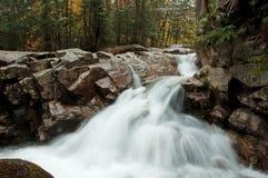 Mãe Natureza a mais fina Fotografia de Stock Royalty Free