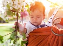 Mãe nova irreconhecível com seu bebê infantil no estilingue imagem de stock royalty free