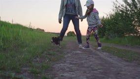 Mãe nova que joga com hisdaughter no parque com a chihuahua pequena do cão filme