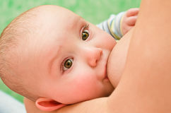 Bebê amamentando da mãe Imagens de Stock Royalty Free