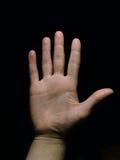 Mão - 5 Foto de Stock