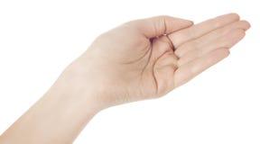 Mão aberta Imagens de Stock