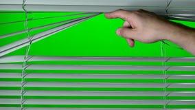 A mão abre o jalousie Tela verde vídeos de arquivo