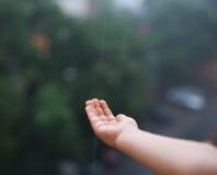 Mão alcançada para a água de chuva Fotografia de Stock Royalty Free