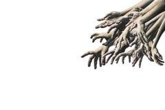 Mão assustador do zombi isolada no fundo branco fotos de stock