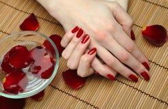 Mão bonita com manicure perfeito do vermelho do prego Fotografia de Stock Royalty Free