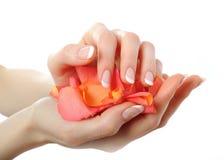 Mão bonita, manicure francês perfeito, pétalas Imagens de Stock
