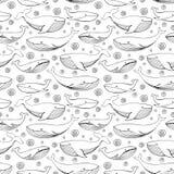 Mão bonito baleias tiradas Teste padrão sem emenda do vetor monocromático ilustração royalty free