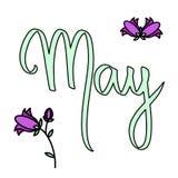 Mão bonito ilustração escrita Campânula da ilustração de maio do mês do vetor Campainhas violetas de tiragem da mão Rotulação do  ilustração stock
