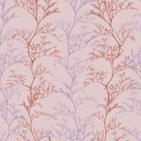 mão botânica sem emenda do teste padrão do rosa com plantas da grama ilustração royalty free
