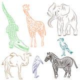 Mão colorida animais e pássaros africanos tirados Rabiscar desenhos do elefante, da zebra, do girafa, do camelo, do marabu e do S Imagens de Stock