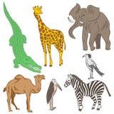 Mão colorida animais e pássaros africanos tirados Rabiscar desenhos do elefante, da zebra, do girafa, do camelo, do marabu e do S Foto de Stock