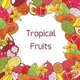 Mão colorida quadro tirado com frutos exóticos tropicais Vetor GR Imagens de Stock Royalty Free