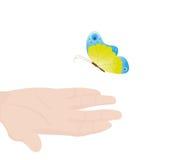 Mão com a borboleta Foto de Stock