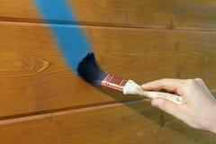 A mão com a escova tira uma linha azul em uma parede de madeira Foto de Stock