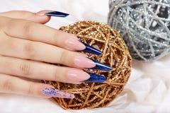 A mão com francês azul artificial longo bonito manicured pregos Foto de Stock