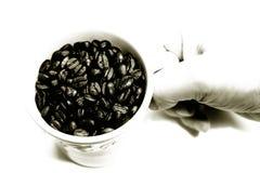 Mão com o copo de feijões do café foto de stock royalty free