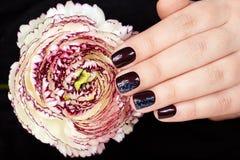 Mão com os pregos manicured curtos coloridos com verniz para as unhas e a flor roxos escuros Fotografia de Stock