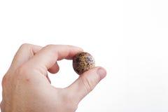 Mão com ovo Imagem de Stock Royalty Free