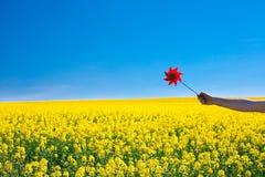 Mão com pinwheel em um campo fotografia de stock