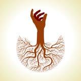 mão com raizes da árvore Imagens de Stock