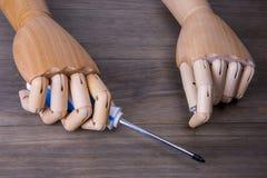 Mão com uma chave de fenda e um parafuso Foto de Stock