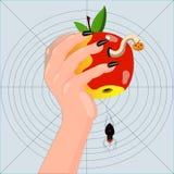 Mão com uma maçã worm-eaten. ilustração stock