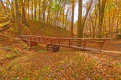 A mão Crafted a ponte do pé na floresta da queda foto de stock