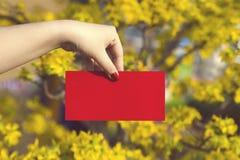 A mão dá o dinheiro nos envelopes vermelhos - prisioneiro de guerra do ANG ou pacote vermelho a algum Foto de Stock Royalty Free