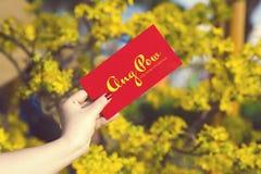 A mão dá o dinheiro nos envelopes vermelhos - prisioneiro de guerra do ANG ou pacote vermelho a algum Imagem de Stock Royalty Free