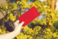 A mão dá o dinheiro nos envelopes vermelhos - prisioneiro de guerra do ANG ou pacote vermelho a algum Imagens de Stock Royalty Free