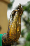 Mão da Buda Imagens de Stock