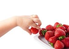 Mão da criança com morangos. Imagens de Stock